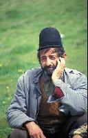 Pasterz rumuński