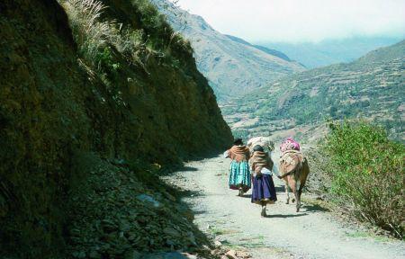 Rejon Ancohuma - w drodze do wioski